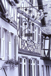 Half timbered buildings von Danita Delimont