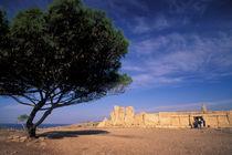 Malta Prehistoric Hagar Qim Temple by Danita Delimont