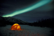 Curtains of green Northern Lights above the Brooks Range; tent in foreground von Danita Delimont
