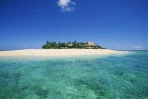 Beachcomber Island by Danita Delimont