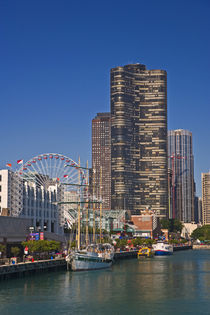 A view of Chicago's Navy Pier by Danita Delimont