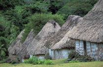 Traditional hut houses von Danita Delimont