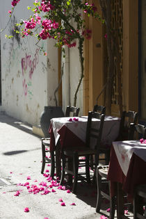 Cafe Table & Pink Flowers by Danita Delimont