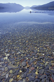 Glacier NP Rocks in Lake McDonald von Danita Delimont