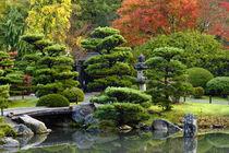 Japanese Garden von Danita Delimont