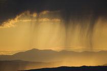 Backlit scene at sunset von Danita Delimont