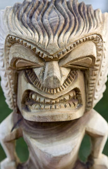 Close-up of tiki carving by Danita Delimont