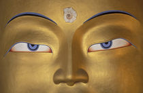 Watchful eyes of Maitreya Buddha in temple by Danita Delimont