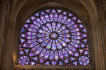 Interior detail of stained glass window in Notre Dame Cathedral by Danita Delimont