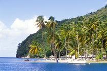 Caribbean by Danita Delimont