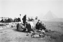 Camel Jockeys Giza Pyramids (NR) by Danita Delimont
