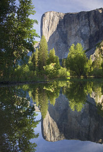 El Capitan reflected in Merced River von Danita Delimont