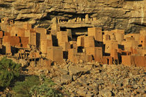 Traditional Tellem (malian pygmees) houses on the Bandiagara cliffs by Danita Delimont