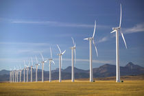 Crowsnest Pass Area: Cowley Ridge Wind Farm Landscape by Danita Delimont