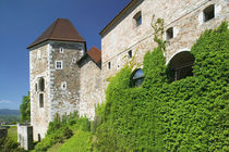 Ljubljana: Castle Hill / Ljubljana Castle von Danita Delimont