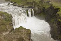 Hafragilsfoss waterfall in Jokulsargljufur National Park von Danita Delimont