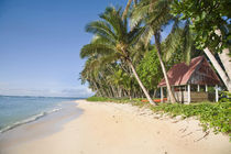 Traditional hut on pristine beach von Danita Delimont