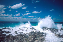 Waves in the Grand Cayman Islands by Danita Delimont