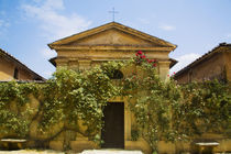 Old Rose Covered Church in Tuscany by Danita Delimont