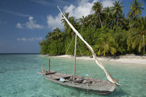 Traditional Maldivian boat in front of palm lined white sand beach by Danita Delimont