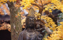 Buddha von Danita Delimont