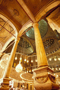 Muhammad Ali Mosque von Danita Delimont