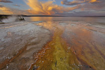 Colorful mineral deposits emit from Black Pool geyser in the West Thumb Geyser Basin along Yellowstone Lake in Yellowstone National Park in Wyoming at sunset by Danita Delimont