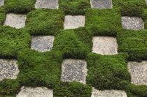 Garden von Danita Delimont