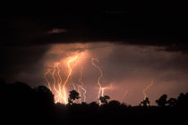 Lightning fills sky over Khwai River at end of dry season in Okanvango Delta by Danita Delimont