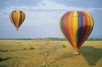 Tourists ride hot-air balloons at dawn von Danita Delimont