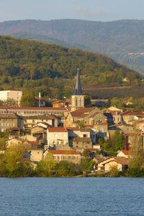 Town near Vienne by Danita Delimont