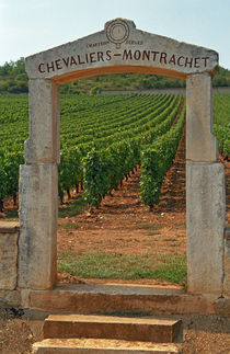 A stone portico to the vineyard Chevalier-Montrachet (Chartron Dupard) by Danita Delimont
