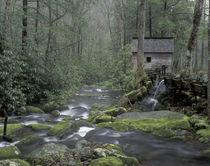 Tub Mill along Roaring Fork by Danita Delimont