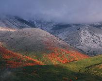 Utah von Danita Delimont