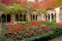 -Paul-de-Mausole monastery von Danita Delimont