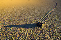 Rock and trail on the Racetrack Playa in late afternoon von Danita Delimont