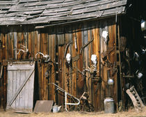Old livery stable barn with animal skull decorations von Danita Delimont