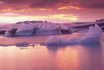 Jokulsarlon lagoon by Danita Delimont