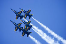 Blue Angels flyby during 2006 Fleet Week performance in San Francisco by Danita Delimont
