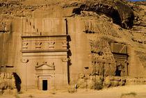 Al Khurimat area von Danita Delimont