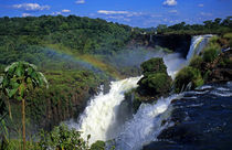 South America; Latin America; Argentina; Brazil; Iguacu Falls von Danita Delimont