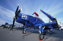 WWII era fighter planes on display for Veteran's Day von Danita Delimont