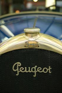 Peugeot Radiator Logo by Danita Delimont