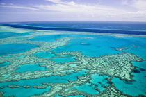 Aerial of the Great Barrier Reef by the Whitsunday Coast with its 'River' by Danita Delimont