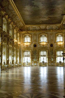 Ballroom by Danita Delimont