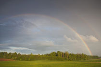 Spring field and rainbow by the A3 highway von Danita Delimont
