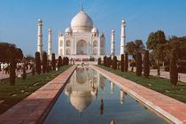India by Danita Delimont