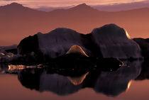 Jokulsarlon lagoon von Danita Delimont
