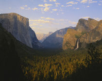 Yosemite valley and Bridal veil falls by Danita Delimont