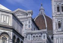 Duomo detail by Danita Delimont
